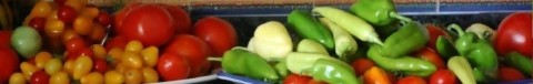 cropped-summer-tomatoes-and-peppers-horz-24.jpg