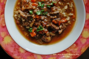 YaYa's Beef Barley and Mushroom Soup III
