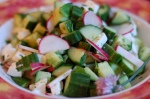 Cucumber Radish and Mozzarella 3